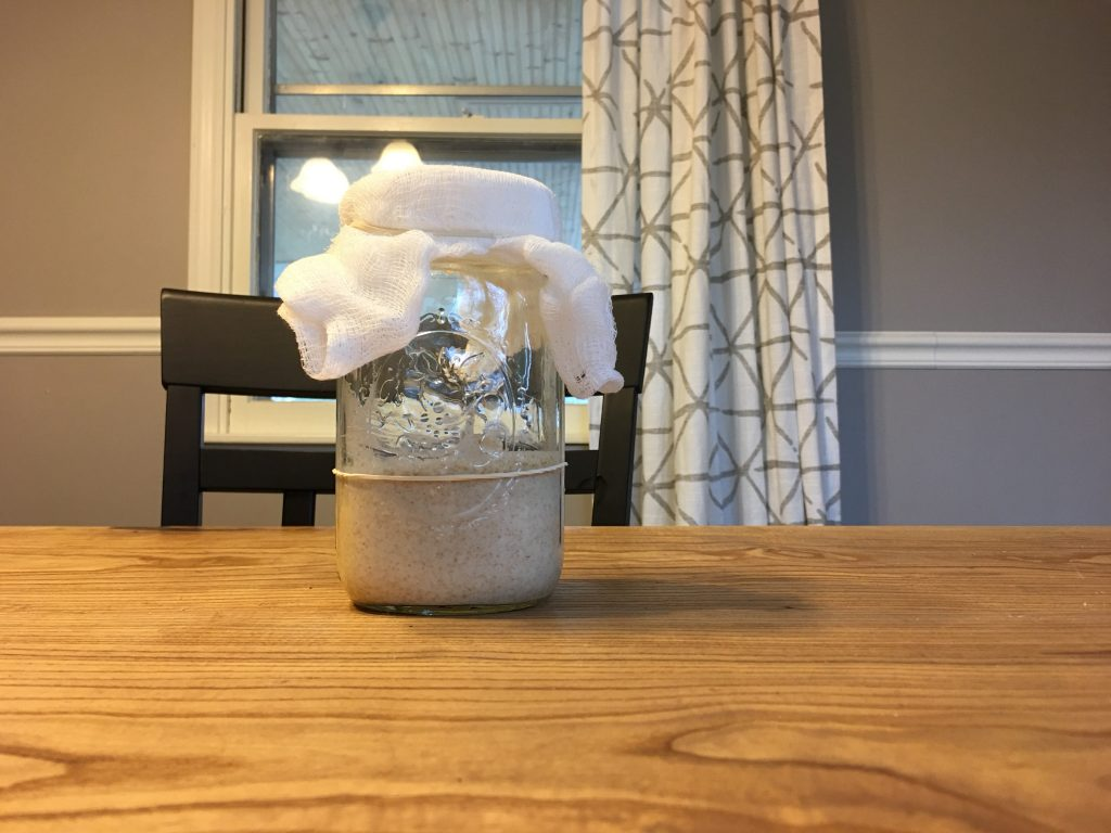 A wide mouth mason jar covered with a cheese cloth is sitting on a raw edge wooden table. The sourdough starter inside doesn't show much activity as it hasn't shown any signs of rising past the rubber band marker